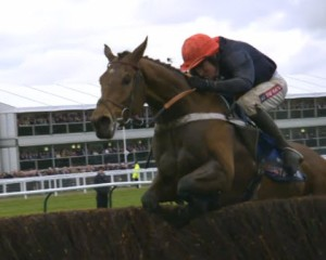 Bobs Worth & B Geraghty in 2013 Gold Cup