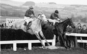 Terry on Woodland Venture and Stan Mellor on Stalbridge Colonist (grey) at the last in the 1967 Gold Cup